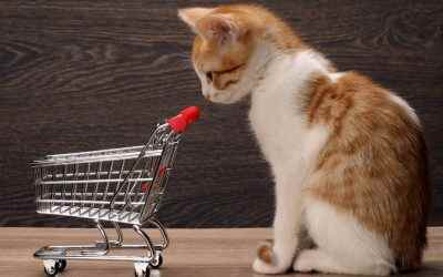 Black Friday for Dogs & Cats – 2019