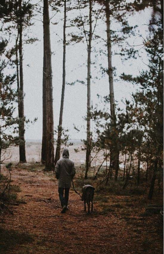 Guy and dog walking in cold