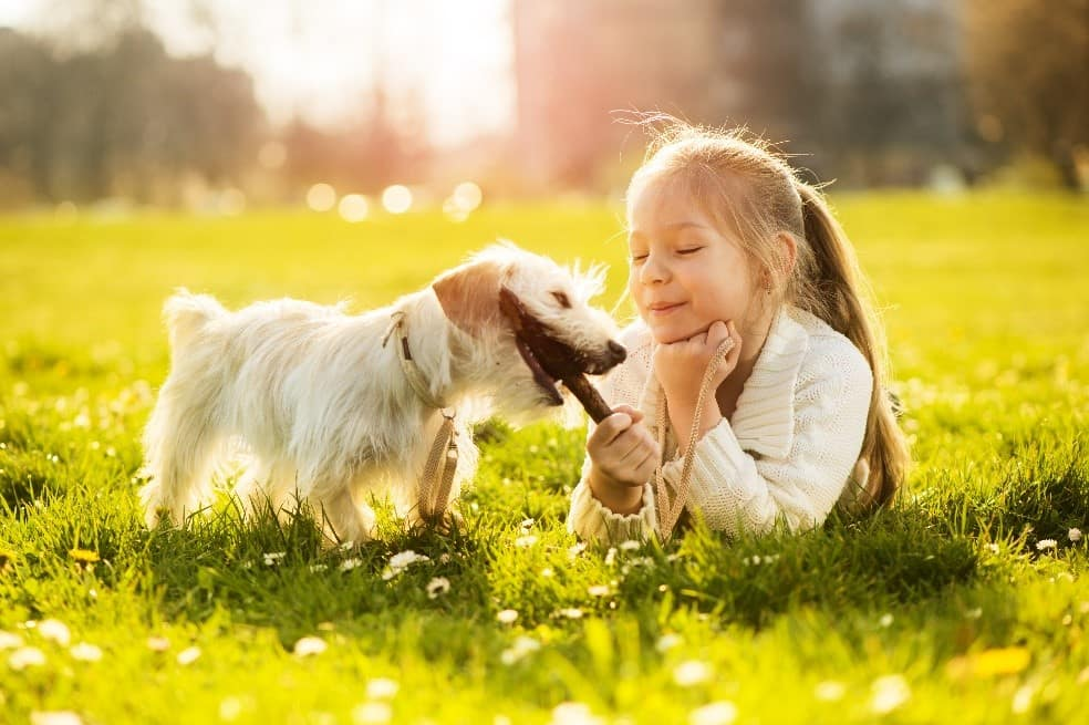 Girl feeding puppy