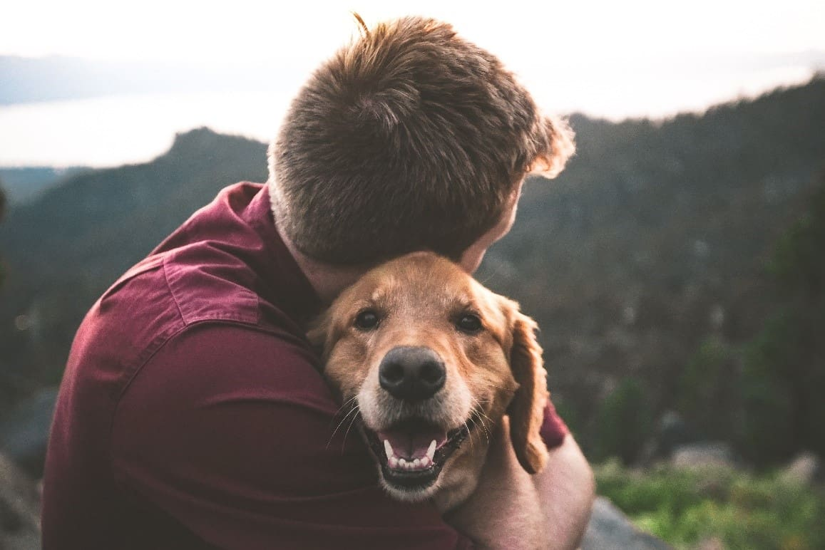 Man and dog hugging in mountain