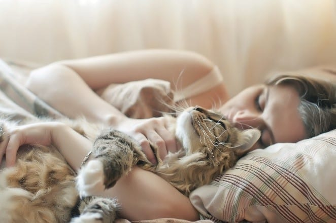 Cat and woman sleep in bed