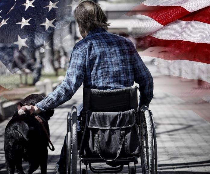 Veteran and dog under the U.S flag