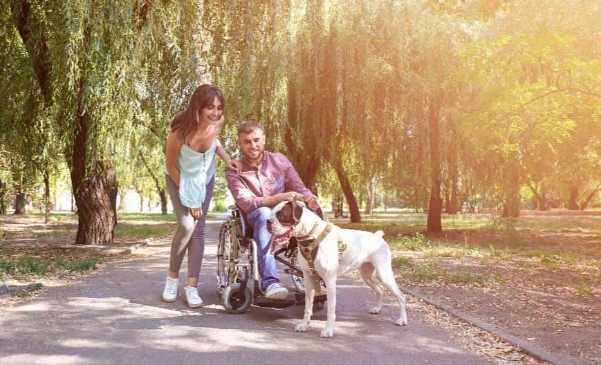 A family and guide dog at a park
