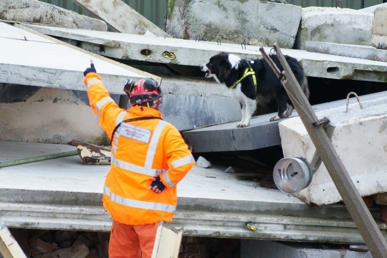 Fireman dog mission onsite