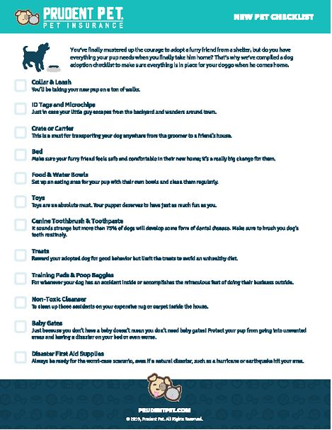 Adopt dog month check list from Prudent Pet