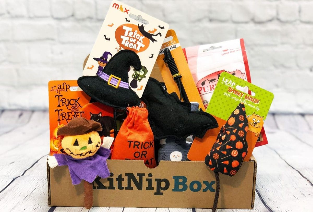 Halloween theme toys in KitNipBox