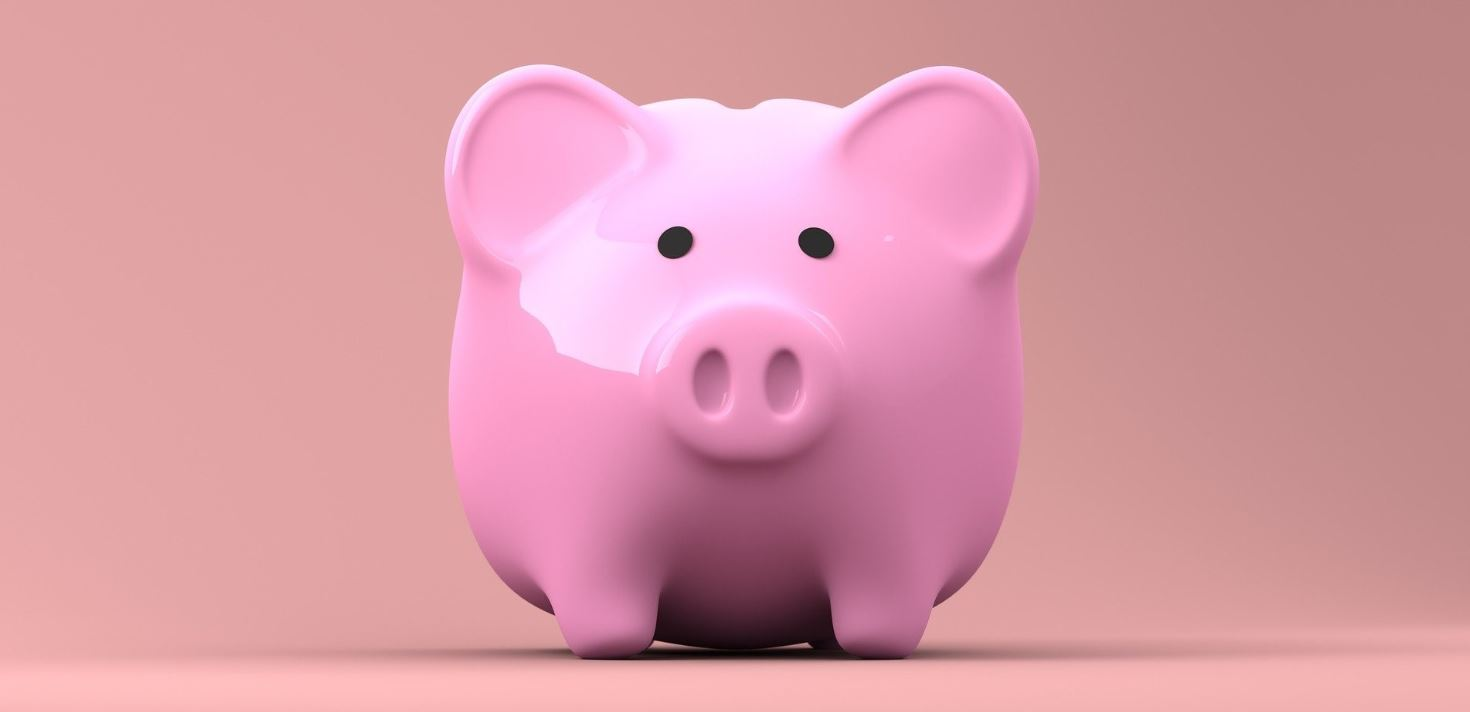 Pink piggy bank in pink background