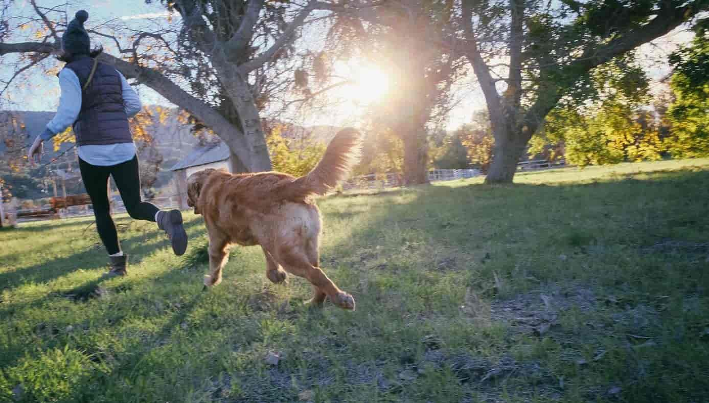 Woman runs with dog at park