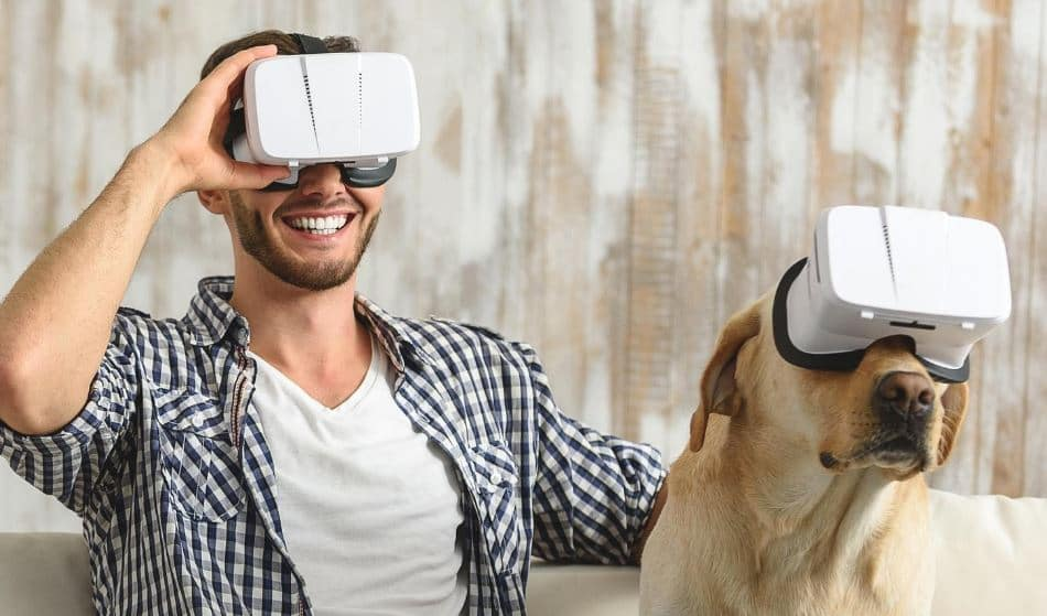 Tech for Your Pet: Wearables