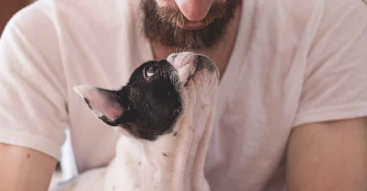 Bearded man hugs a dog