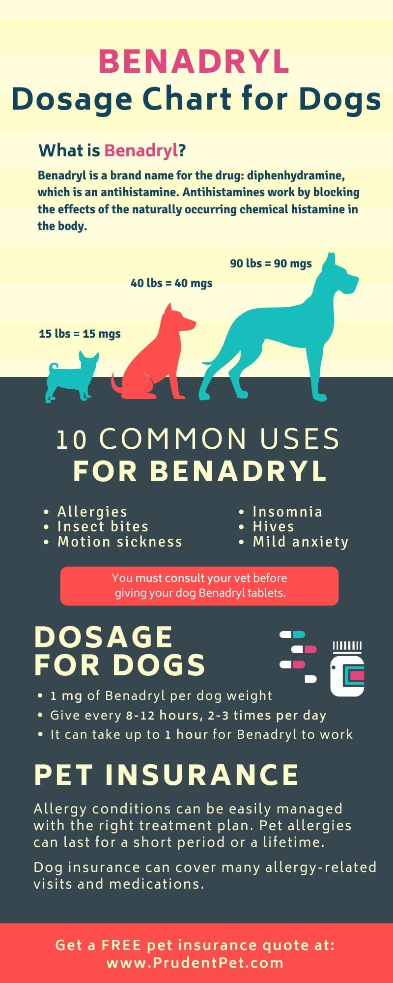 Benadryl infographic from Prudent Pet