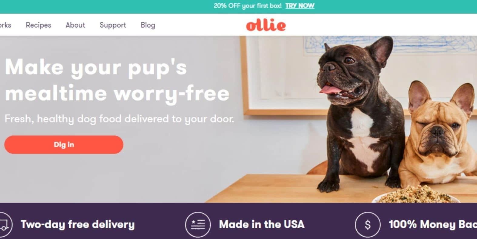 Prudent Pet chooses Ollie as the best pet food company