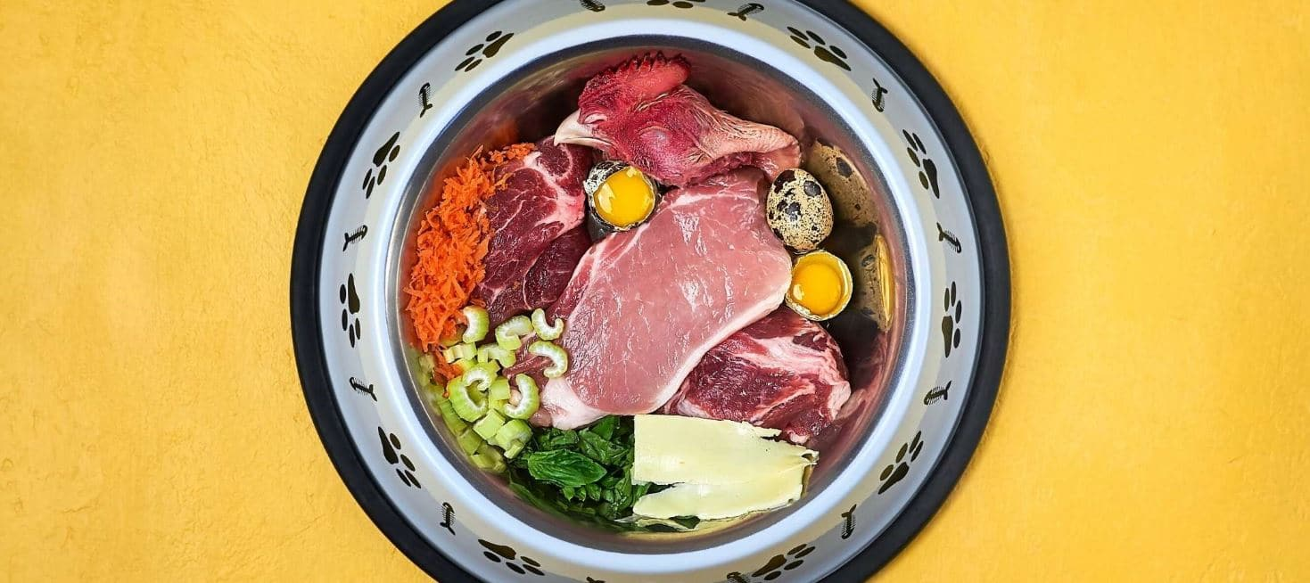 Raw food for dogs in bowl