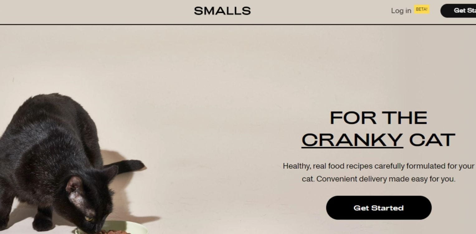 Smalls for the cranky cat