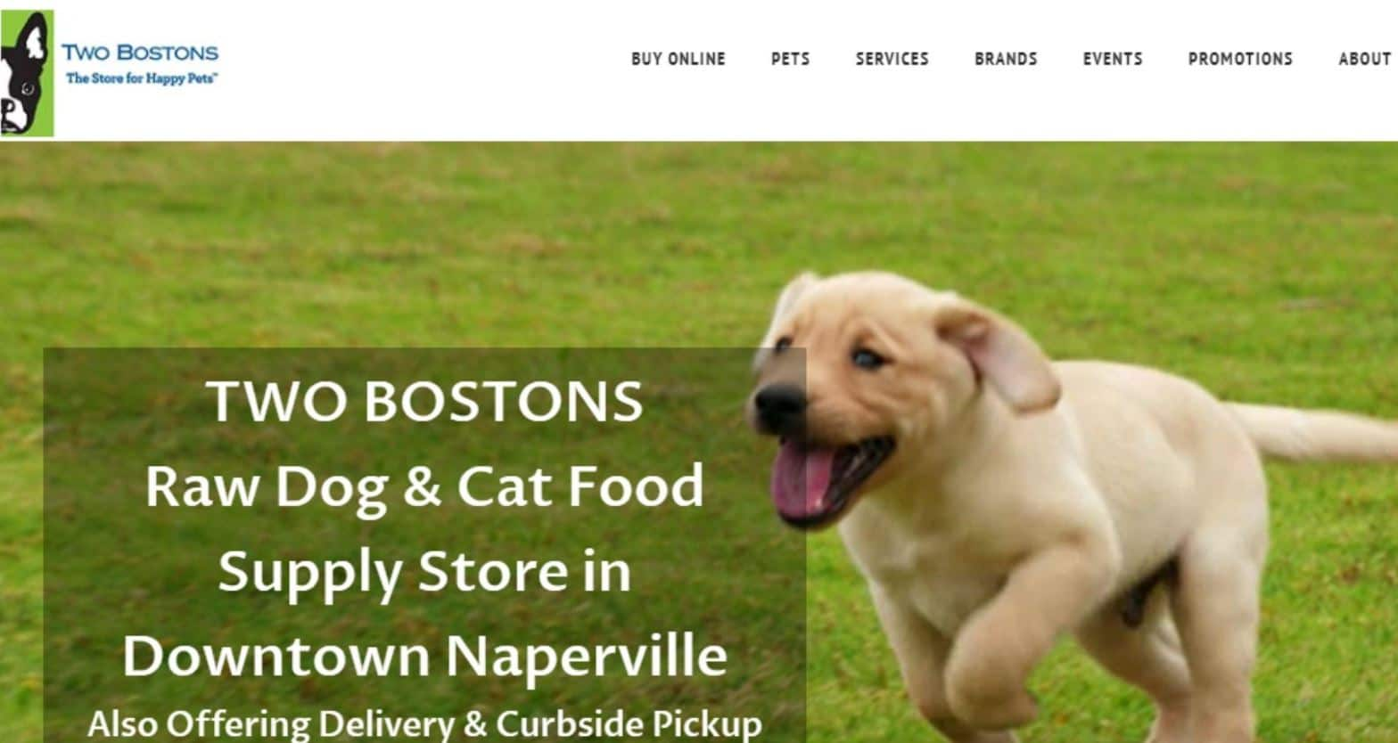 Two Bostons as the 10th best delivery pet food