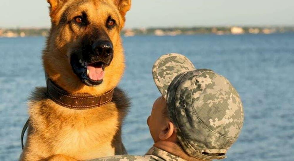 Dog and solider at the lake